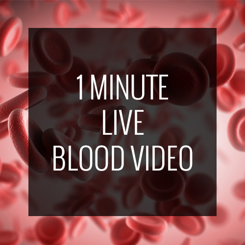1-min-blood-video