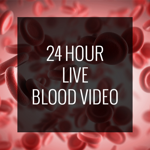 24-hour-blood-video
